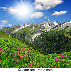 alps-europe, savoy