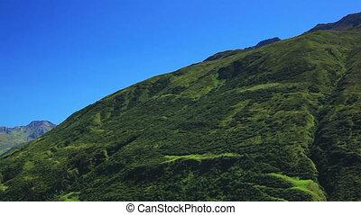 Alps green mountains.