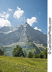 Alps in Austria - Alps of Austria with grean meadow and...