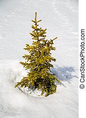Alps in winter - The Alpe d Huez ski domain in the French ...