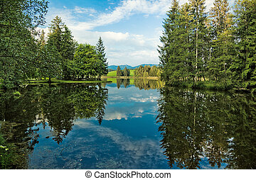Alps lake and wild forest