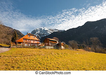 Alps Mountain Chalet H