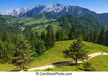 Alps Mountains Landscape. View of the Wilder Kaiser Range, ...