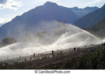 alps, sprinkler