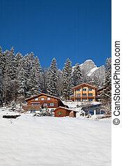 alps, winter