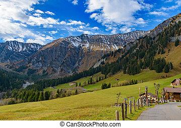 alpy, evropa, móda, vyvýšenina, plocha, tradiční, ubytovat se, mladický les, švýcarský, švýcarsko