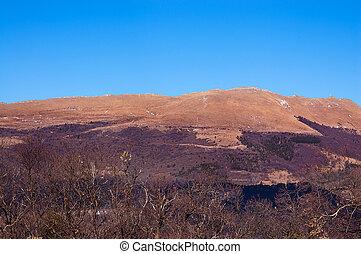 alpy, monte, baldo, -, jesień, włoski