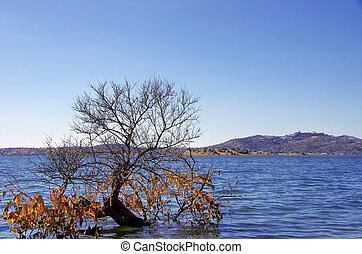Alqueva lake near Monsaraz village