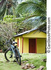 alquiler, nicaragua, habitación, cabaña, selva