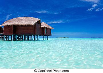 alrededor, isla, overwater, tropical, bungalow, laguna