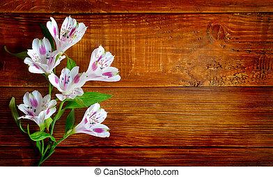 alstromeria, arrière-plan., fleurs, planche, bois