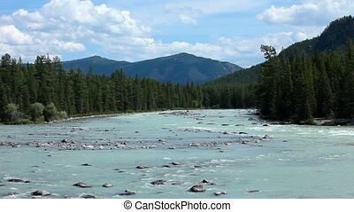 Altai mountains. River Argut. Beautiful highland landscape....