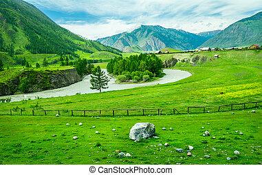 altai, vila, russo, rural, rússia, paisagem