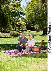 alten paaren, picnicking, in, der, g