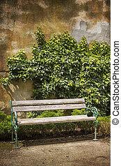 alterato, panca legno, parete, fronte, edera