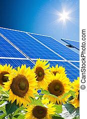 alternatief, zonne, energy., macht, plant.