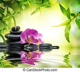 alternativa, jardín, masaje