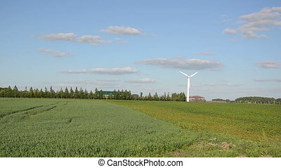 alternative energy - Alternative renewable electricity...