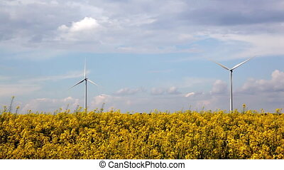 Alternative energy on yellow field,time lapse
