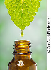 alternative herbal medicine - fluid drops down from leaf as...