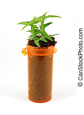 Alternative Medicine - A medicine bottle with a green plant...