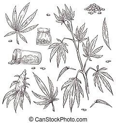 Alternative medicine, cannabis plant and marijuana pills set...