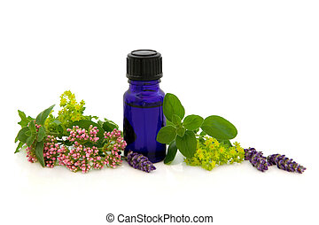 Lavender herb, valerian, ladies mantle flower heads with marjoram leaf sprigs and aromatherapy blue glass bottle isolated over white background.