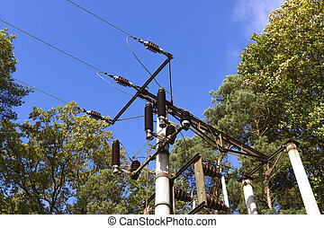 altes , transformator, station, in, der, wald