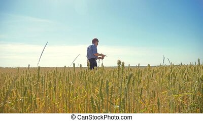 altes , zwei, landwirte, sommer, mann, weizen- feld, rennender , in, der, feld, weizen, bread., zeitlupe, video., landwirt, ökologie, concept., landwirtschaft, arbeiter, arbeitende , in, der, field., klug, landwirtschaft, ökologie, mann, lebensstil, arbeiter, landwirtschaft, begriffe