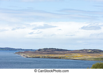 altiplanos, loch, escócia, ovelha
