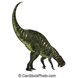 Altirhinus Dinosaur Tail