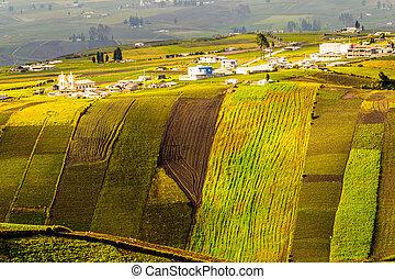altitudine alta, agricoltura