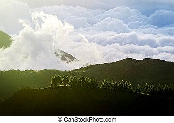 altitudine alta, paesaggio, in, ecuador