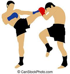 alto, calcio, due, combattimento, pugili
