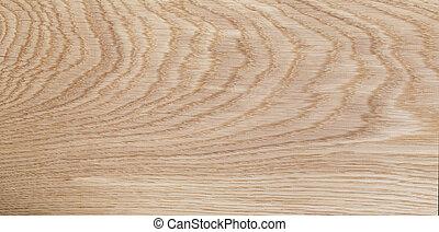 alto, dettagliato, quercia, naturale, struttura