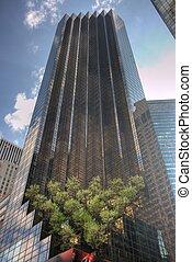 alto, rascacielos, con, cielo azul, y, árboles
