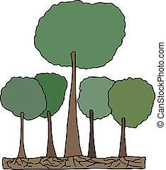 alto, vector, bosque de árbol