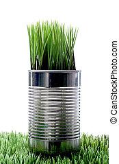aluminim, verde, lata, crecer, recyled, pasto o césped