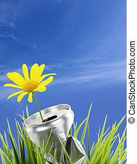 aluminum απολύω , με , ακμάζω , μαργαρίτα , λουλούδι , επάνω , ο , αγίνωτος αγρωστίδες