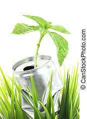 Aluminum can with growing plant on the green grass