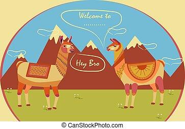 américa, plano de fondo, carácter, to., dos, estilizado, turista, montañas., llamas, inscription:, bienvenida, sur, animal, lugar, poster.