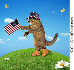 américain, 2, drapeau, chat