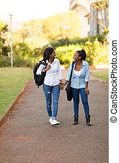 américain africain, etudiants collège, marche, sur, campus