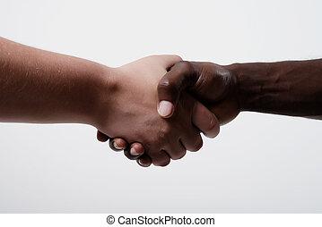 américain africain, mains, homme affaires, secousse, caucasien