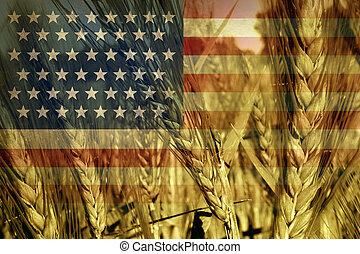 américain, agriculture