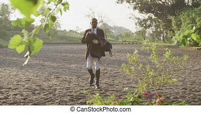 américain, homme africain, selle, cheval, dressage, marche
