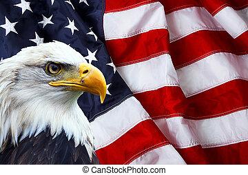 américain nord, aigle chauve, sur, drapeau américain
