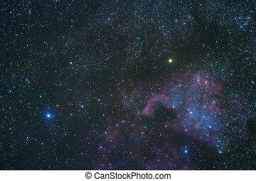 amérique, deneb, cygnus, nébuleuse, constellation, plus brillant, étoile, nord