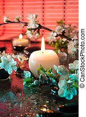 amêndoa, flores, com, vela, amêndoa