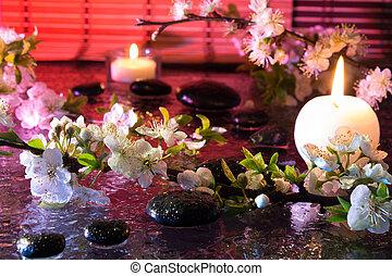 amêndoa, flores, com, vela